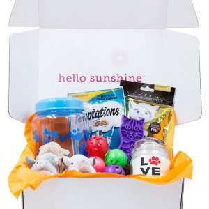 Kitty Love Blue Gift Box - Ship Sunshine