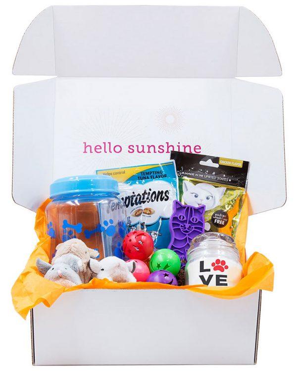 Kitty Love Blue Gift Box - Ship Sunshine