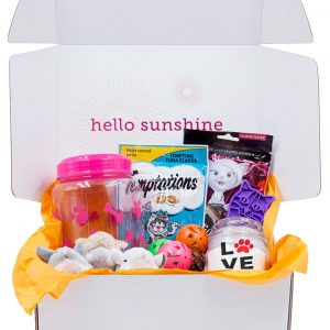 Kitty Love Pink Gift Box - Ship Sunshine