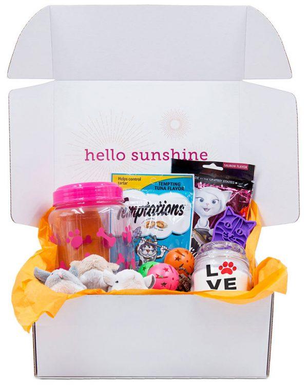 Kitty Love Pink Gift Box - Ship Sunshine