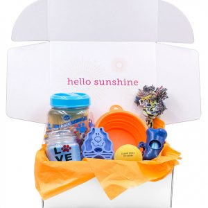 Puppy Love Blue Gift Box - Ship Sunshine