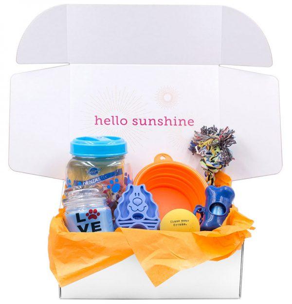 Puppy Love Blue Gift Box - Ship Sunshine