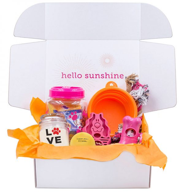 Puppy Love Pink Gift Box - Ship Sunshine